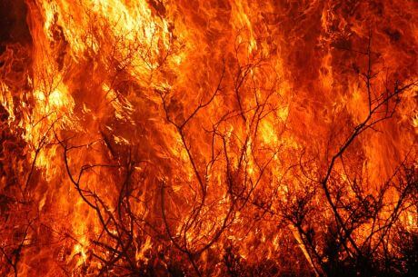 fuoco.jpg.jpeg