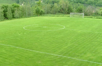 camp futbol.jpg