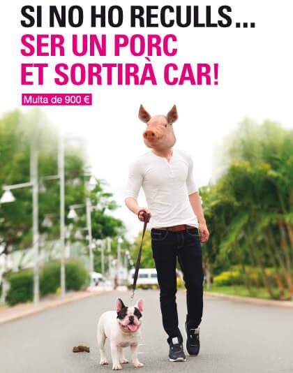 Cartell campanya excrements de gos.jpg