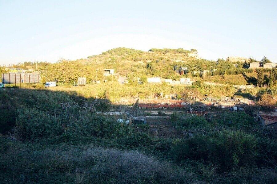 terrenys pomar.jpg